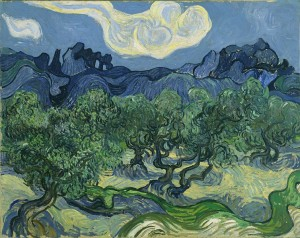 754px-Van_Gogh_The_Olive_Trees.